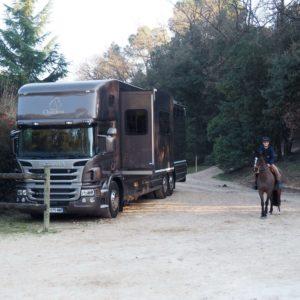 PL chevaux idéal pour le CSO